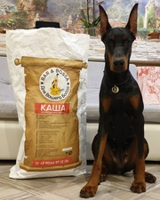Реально смачный корм для собак